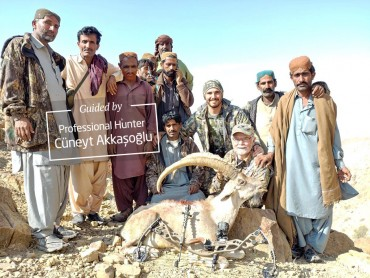 Blanford urial & Sindh ibex hunting in Pakistan