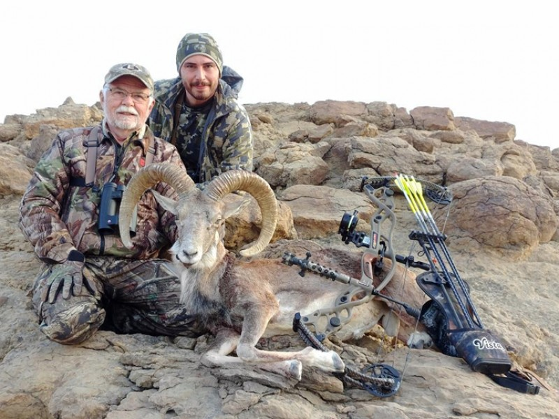Blanford urial & Sindh ibex hunting in Pakistan, Starting from, View more